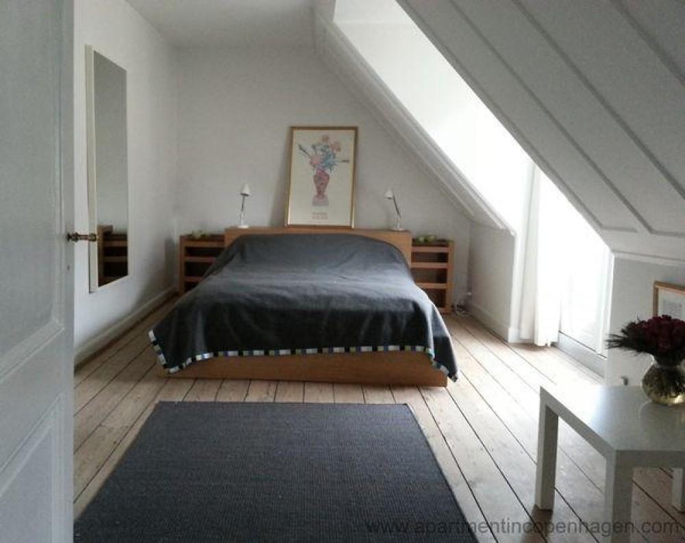 Copenhagen City vacation rental with