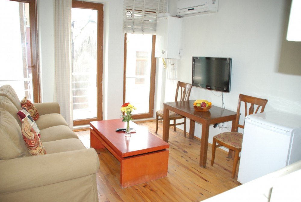 Istanbul vacation rental with living and dining area