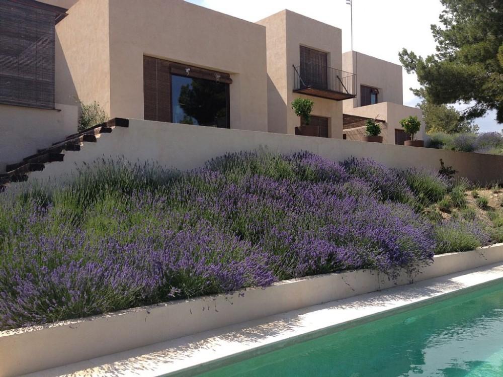 El Campello vacation rental with