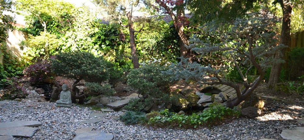 berkeley vacation rental with Zen garden with a gurgling waterfall and pond