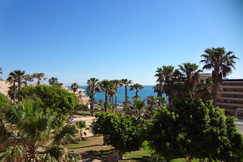 1 Bed Short Term Rental Apartment Torrevieja Area