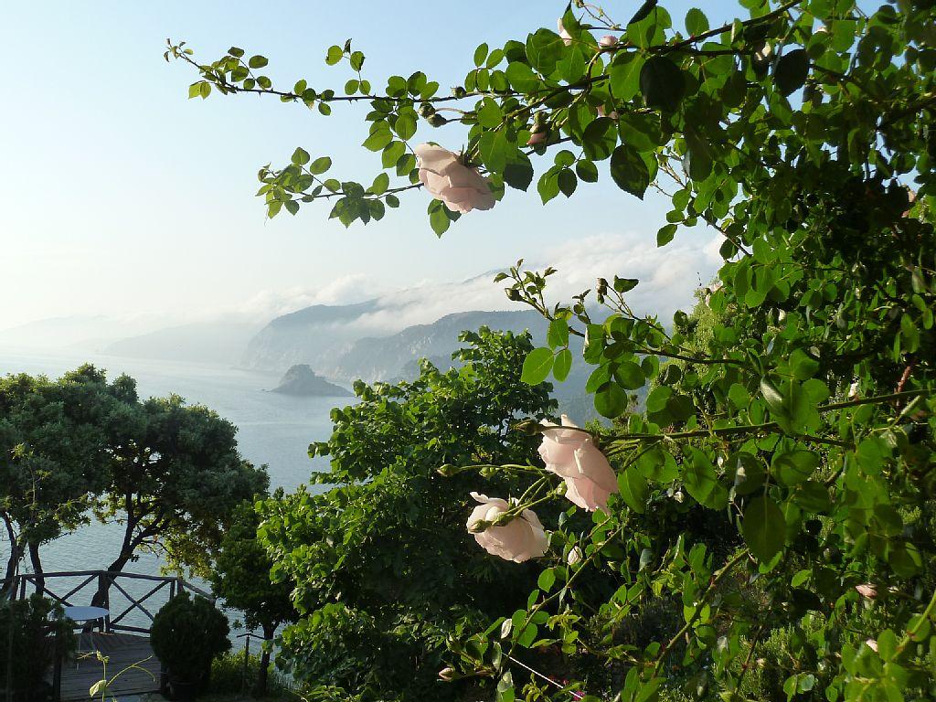 Skopelos Island vacation Villa rental