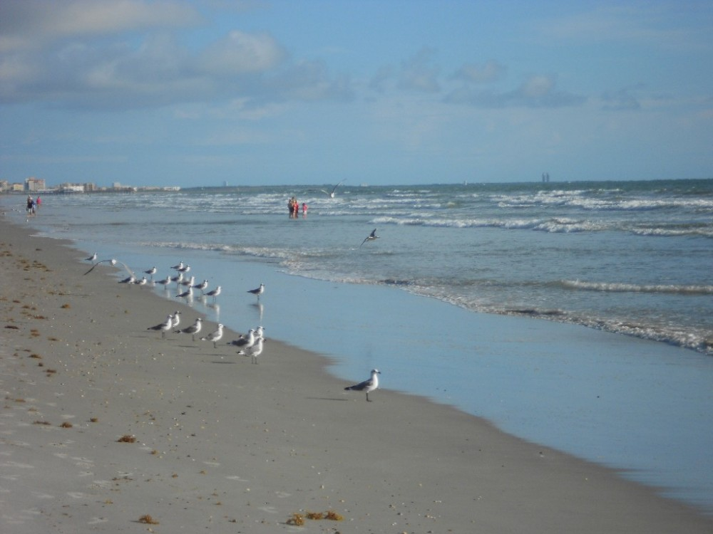 cocoa beach vacation rental with Beach