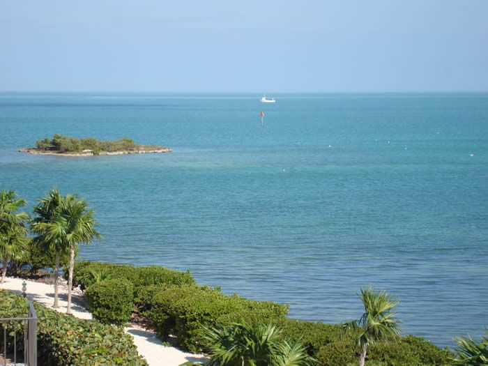 Seaglass-20 feet from the Gulf--Oct./Nov. $1095.00 per wk.