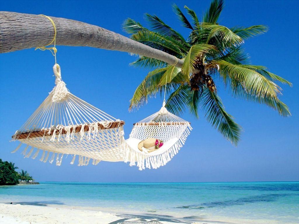 Affordable Beach Vacation Condos -Treasure Island Discounted