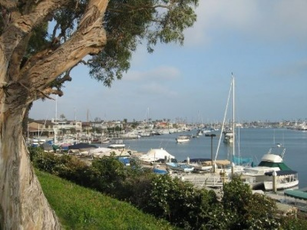 newport beach vacation rental with Entrance to island boasts yachts of all sizes
