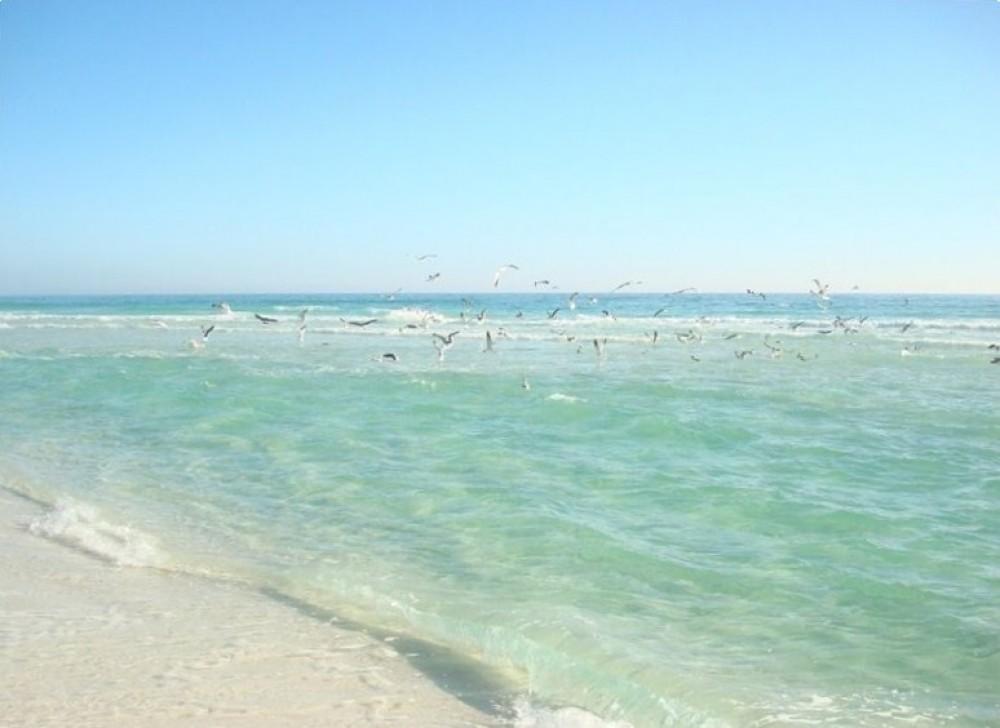 Destin Area vacation rental with Destin Paradise