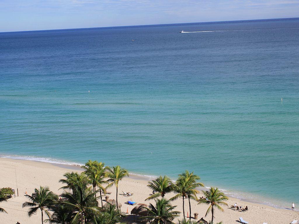 1 Bed Short Term Rental Condo Sunny Isles Beach