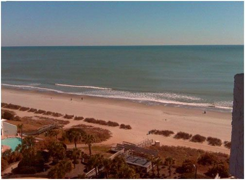 1 Bed Short Term Rental Condo myrtle beach