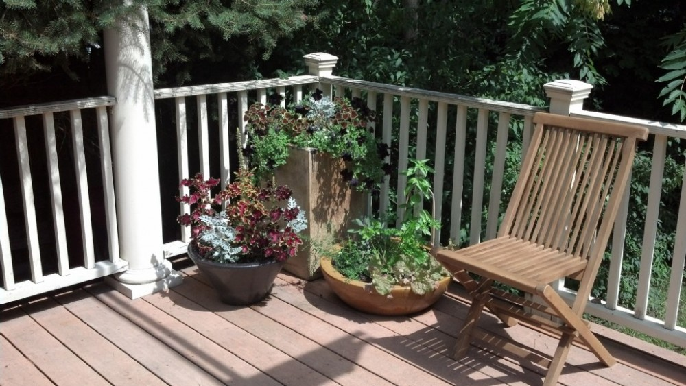 Melrose vacation rental with