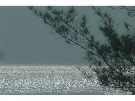 Luxury! 4 Bedrms Sleeps 8 Gulf Peak Covered Parking Wifi Fishin Gear Lanai Grill