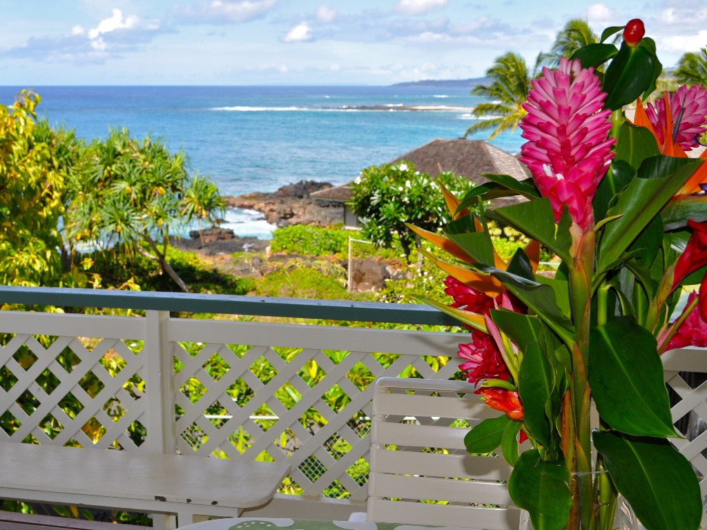 Oceanfront Plantation Cottage - Amazing Views, Perfect Poipu Location!