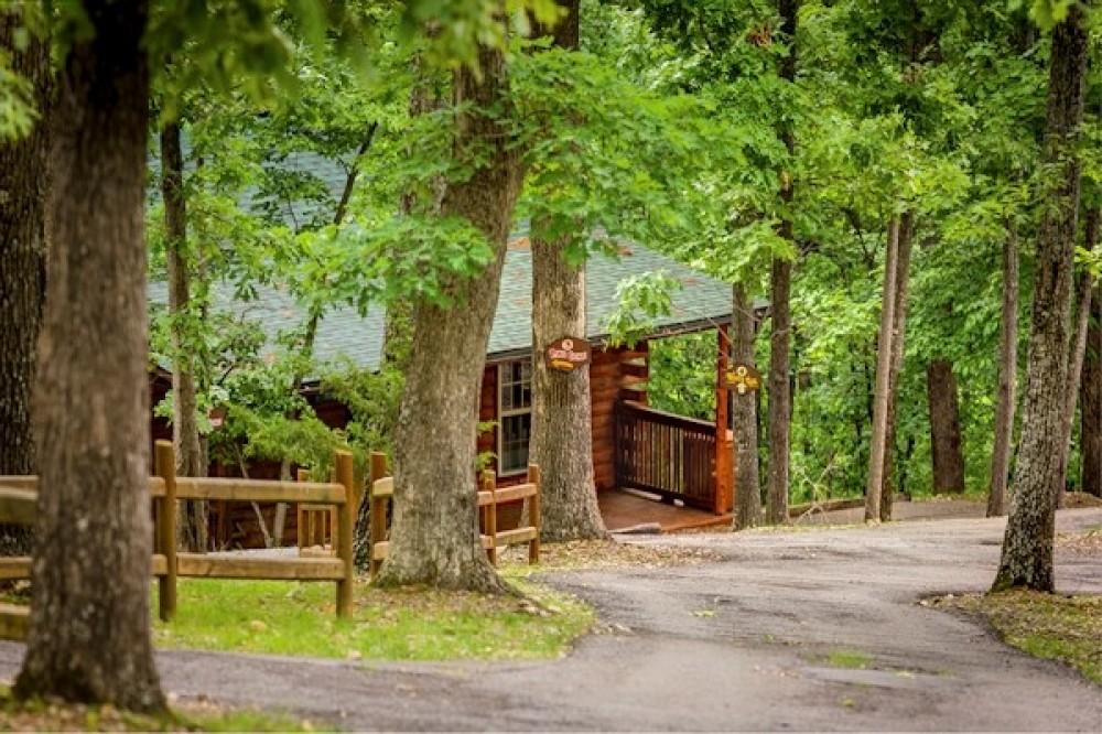 Eureka Springs vacation rental with Our Bear Cub Cabin! Rustic Elegance