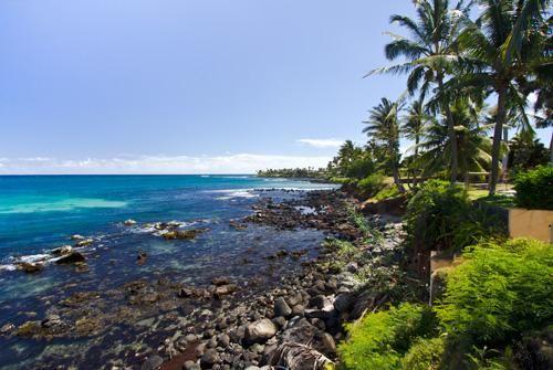 Oceanfront Cottage - Windsurfers Paradise!