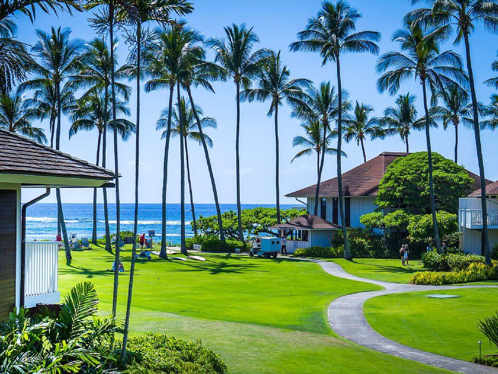 Best Beachfront Resort * 35 Tropical Acres Ocean Views * 1 Minute Walk to Beach