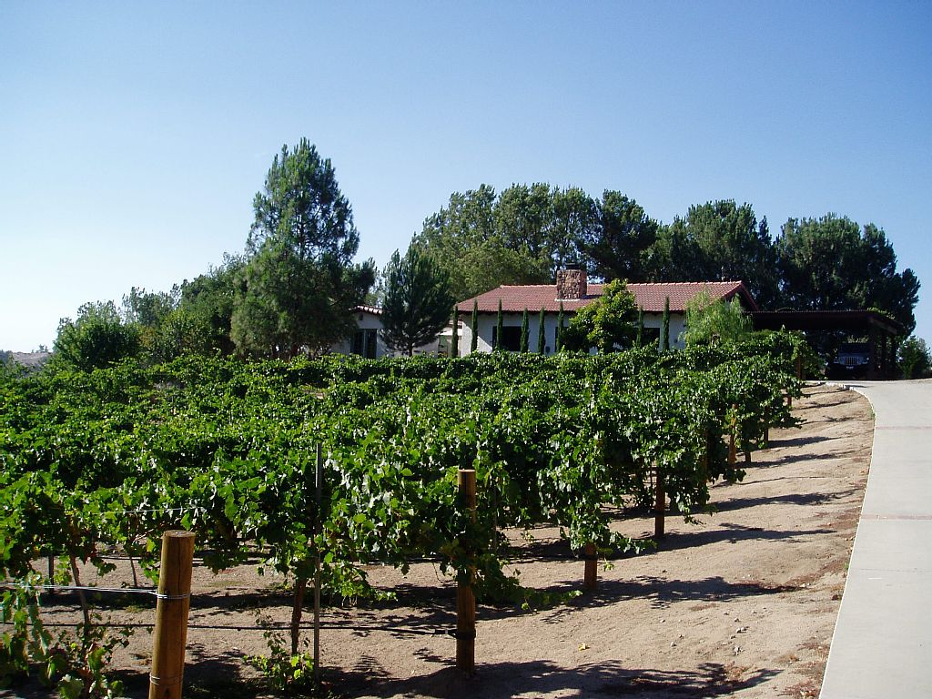 PRIVATE 2 BR, 2 BA GUESTHOUSE IN THE VINES with Pool - WALK TO WINERIES.
