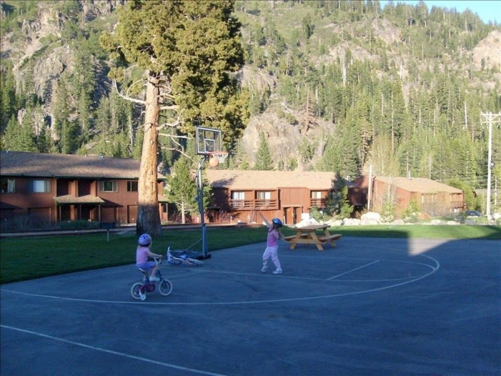 Alpine Meadows vacation rental with