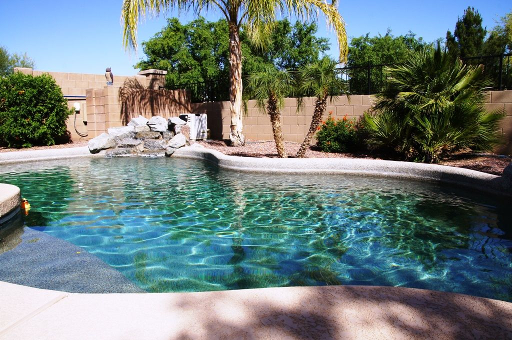 Private Desert Oasis with Tropical Backyard, Optional Pool Heat, Built-in Grill