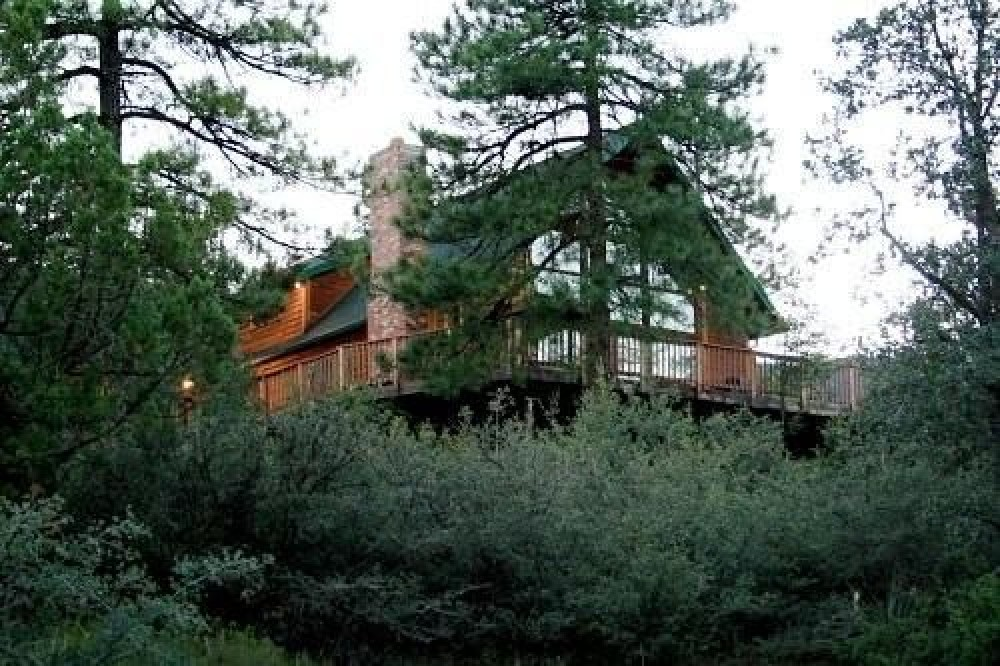 Pine vacation rental with