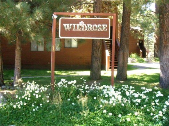Wildrose # 9 - Large and bright two bedroom, two bath!