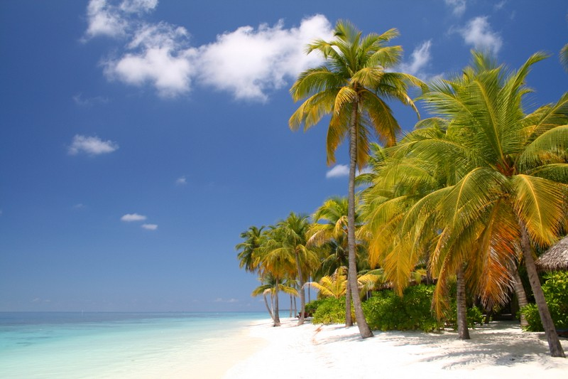 One of the Best Private Beaches in Us! Great Location for Fun Activities-Wifi