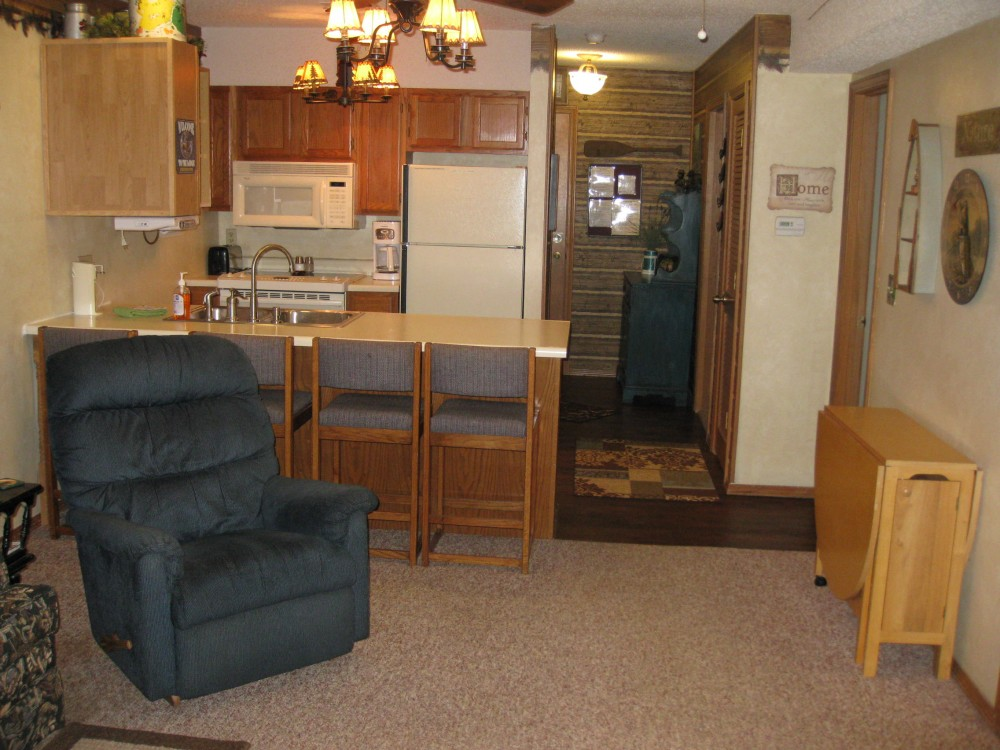 Reeds Spring vacation rental with