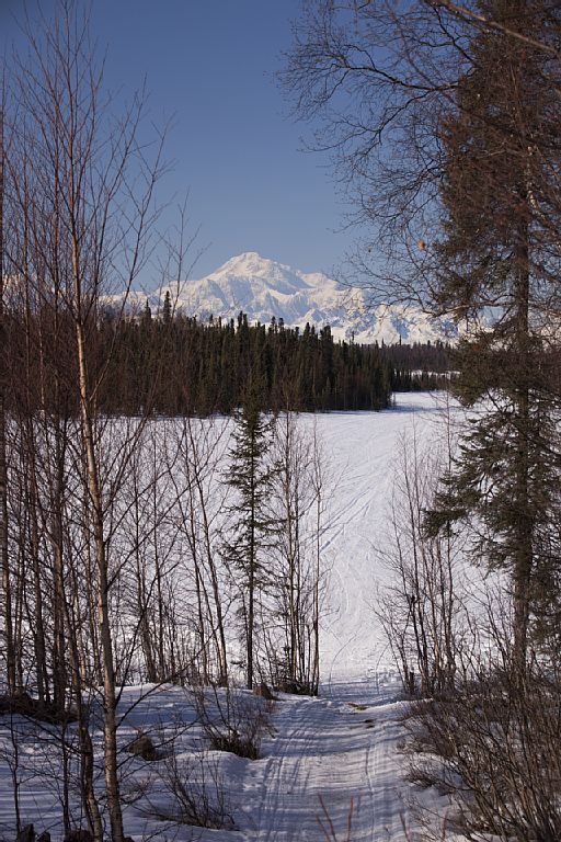Airbnb Alternative Willow Alaska Rentals