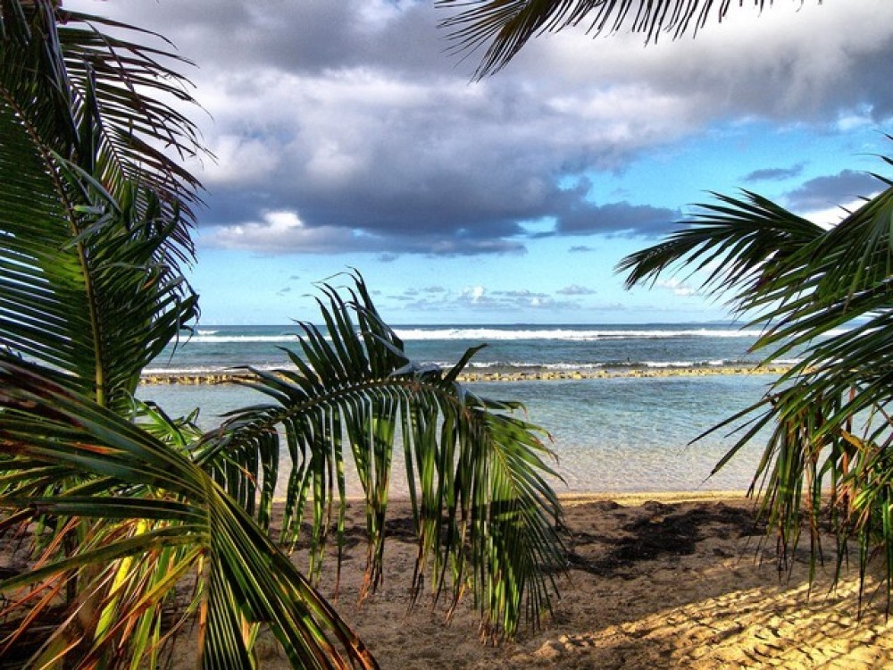 Vieques vacation rental with
