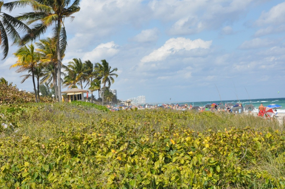 Dania Beach vacation rental with