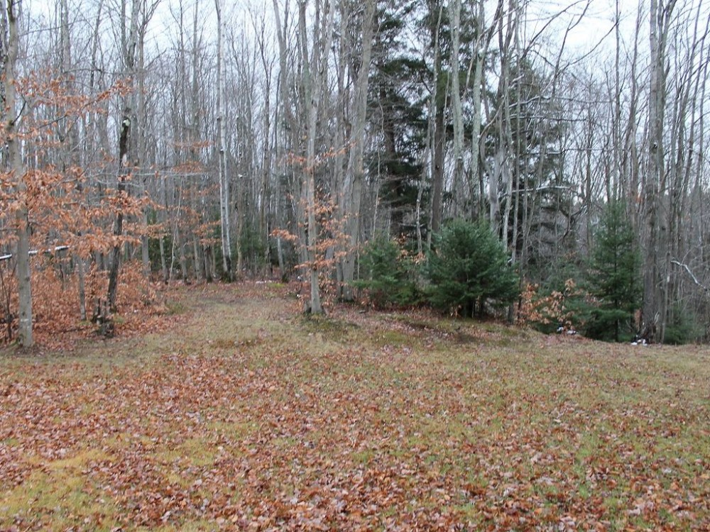 Vacation Home Property Manistique