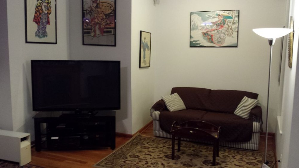 Queen sleeper sofa and tv Chicago vacation home