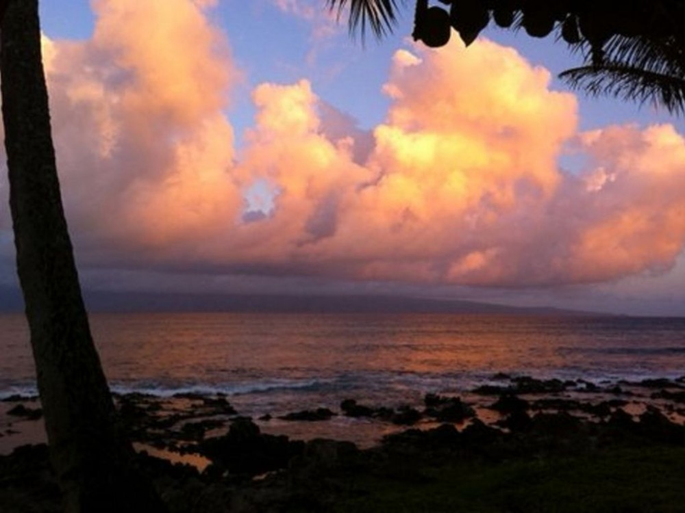 Napili Point Condo - Spectacular View