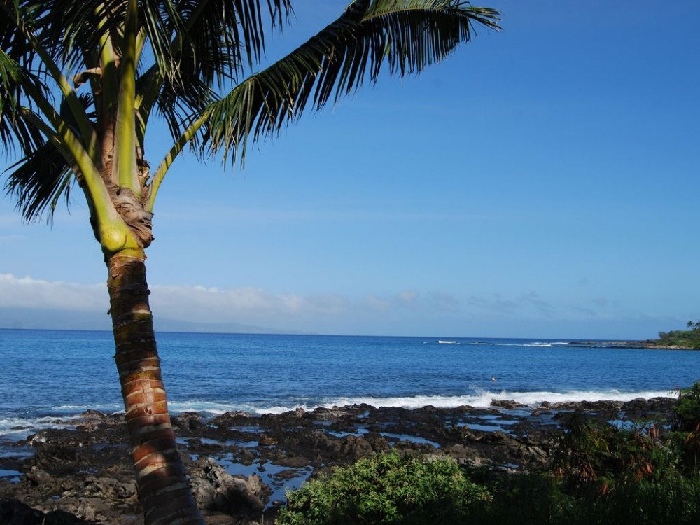 Airbnb Alternative Property in Lahaina