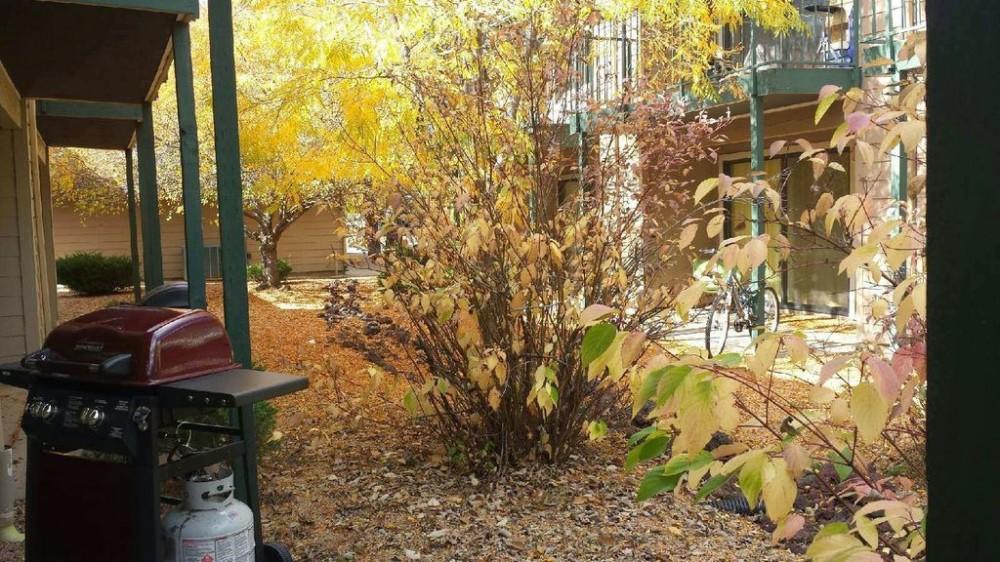 Airbnb Alternative Property in Flagstaff