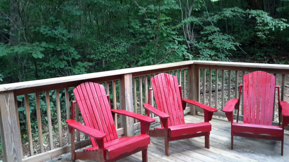 Saluda vacation rental with