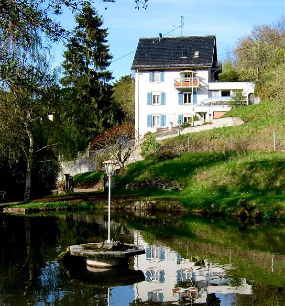 Grand Est vacation House rental