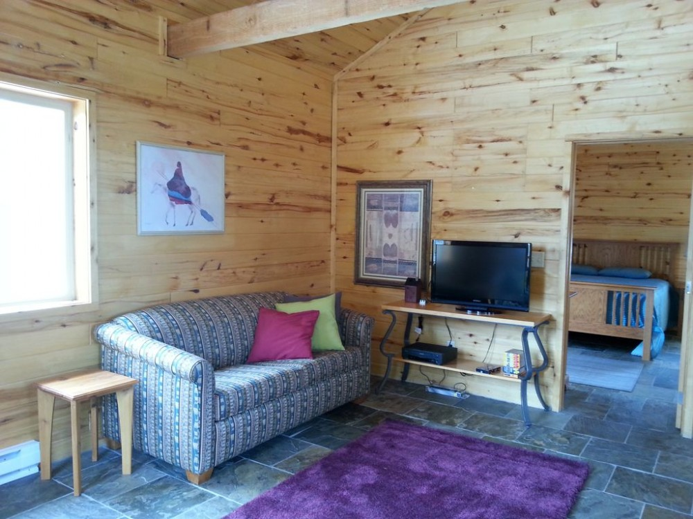Living room with 2 sofa sleepers Airbnb Alternative Woodland Park Colorado Rentals