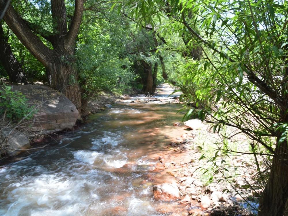 steams in area Airbnb Alternative Woodland Park Colorado Rentals