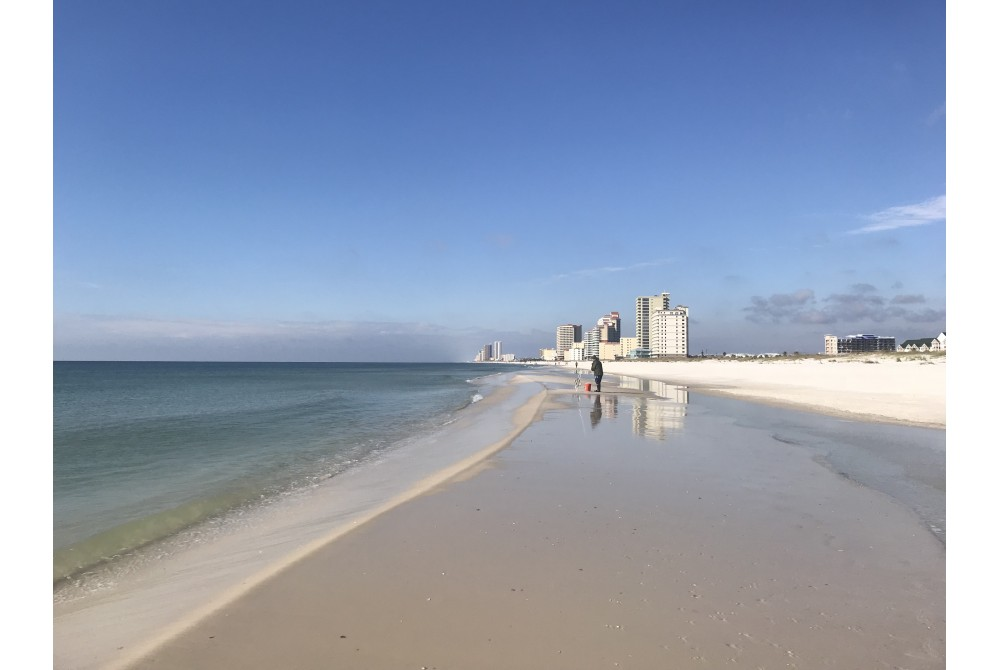 Gulf Shores vacation rental with Upgraded sleeper sofa with genuine leather.