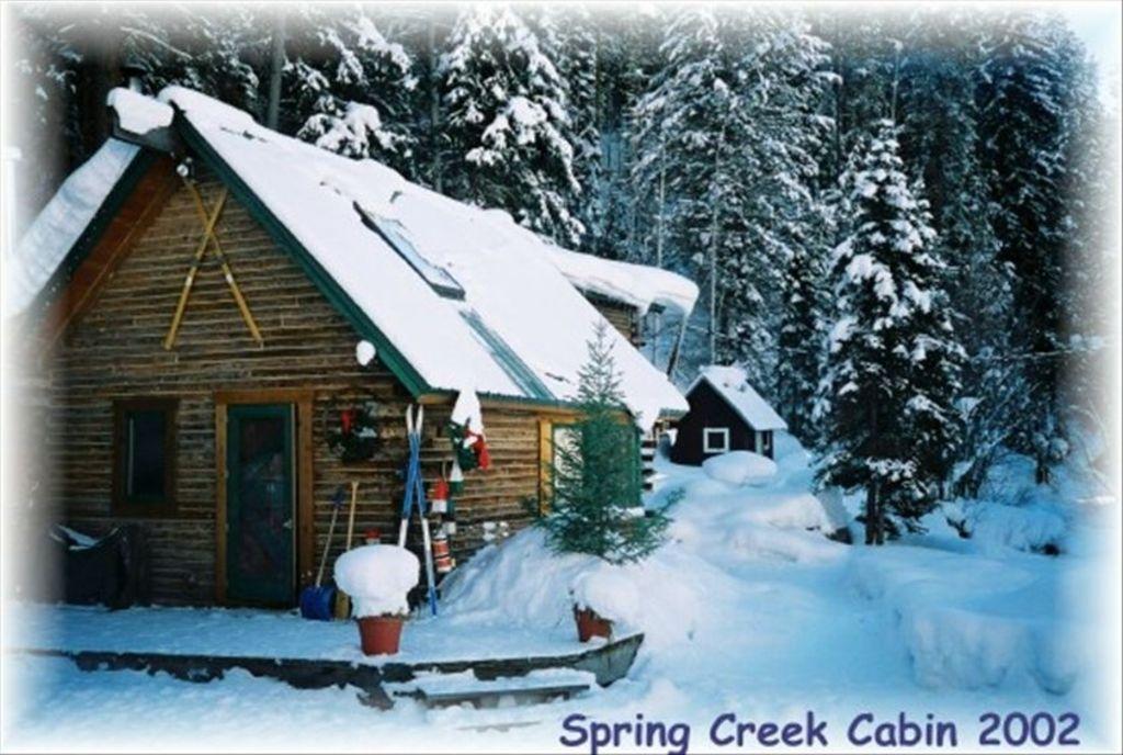 Cozy Romantic Cabin in the Woods