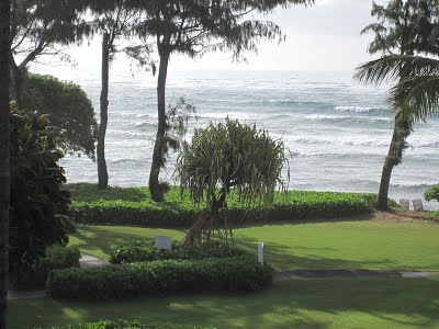 #320 Ocean View Kauai Condo Vacation Rental By Owner