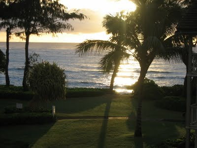 #321 Ocean View Kauai Condo Vacation Rental By Owner