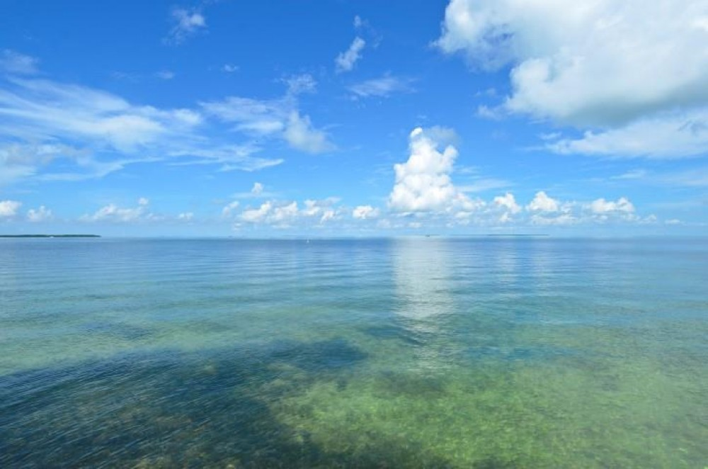 Islamorada vacation rental with View from Property