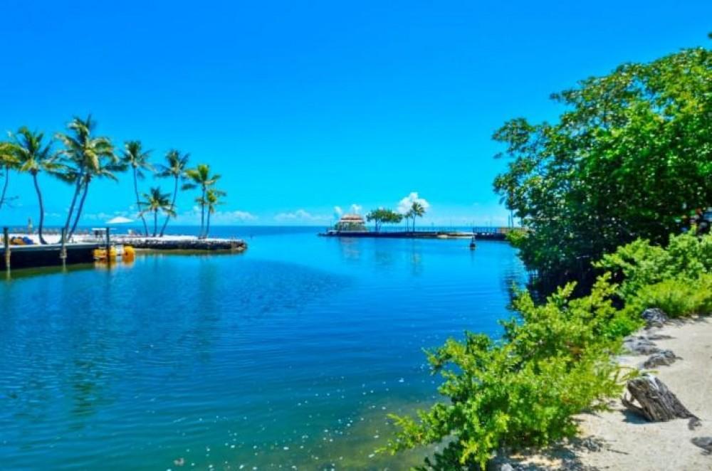 Islamorada vacation rental with Ocean Views