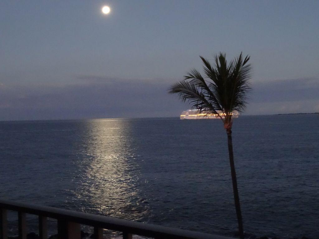 Spectacular Condo: 2BR/2BA Oceanfront