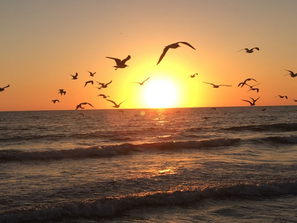 Cape Coral vacation rental with Florida sunsets are one of a kind