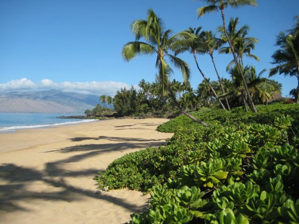 Kihei vacation rental with THE BEACH AT DOLPHINS POINT MAUI