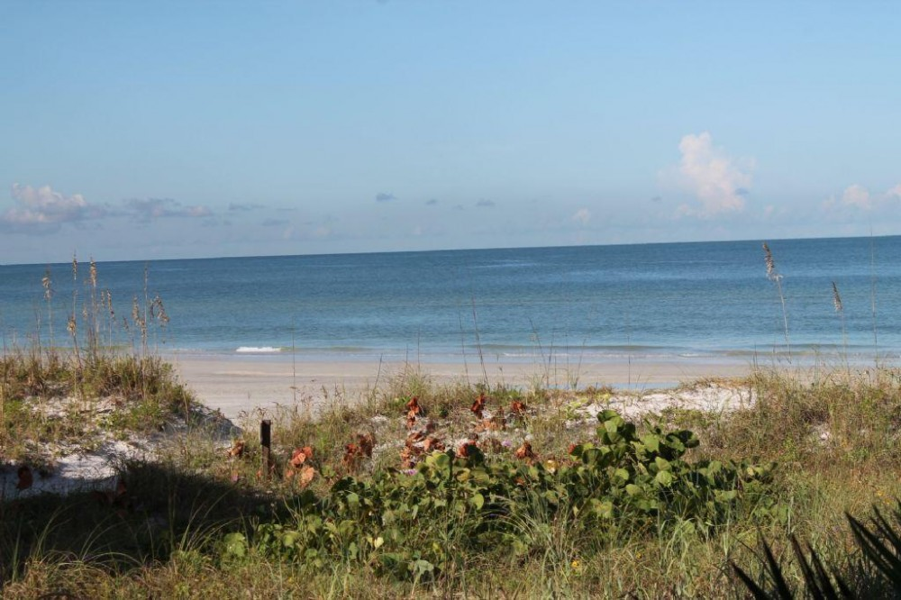 Indian Rocks Beach vacation rental with Building