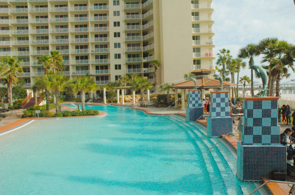 Panama City Beach vacation rental with Swim with the Shores of Panama Dolphins