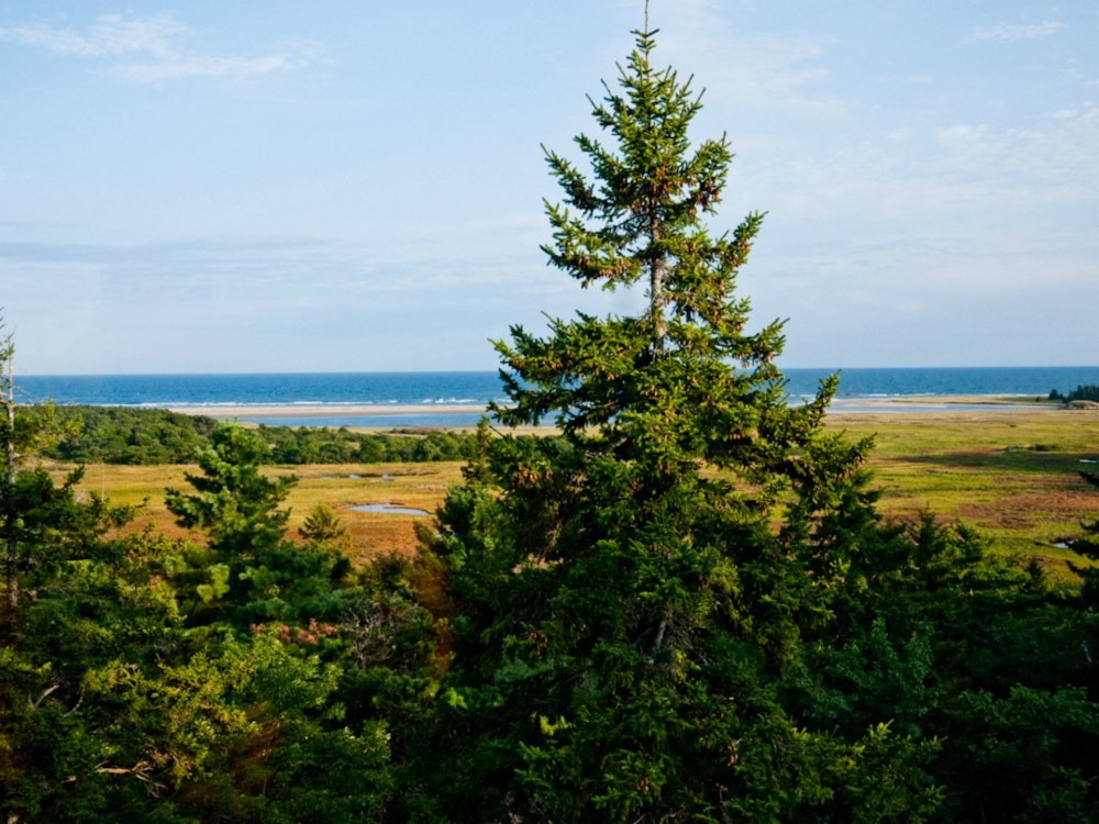 Popham Beach vacation rental with View From The Main Deck